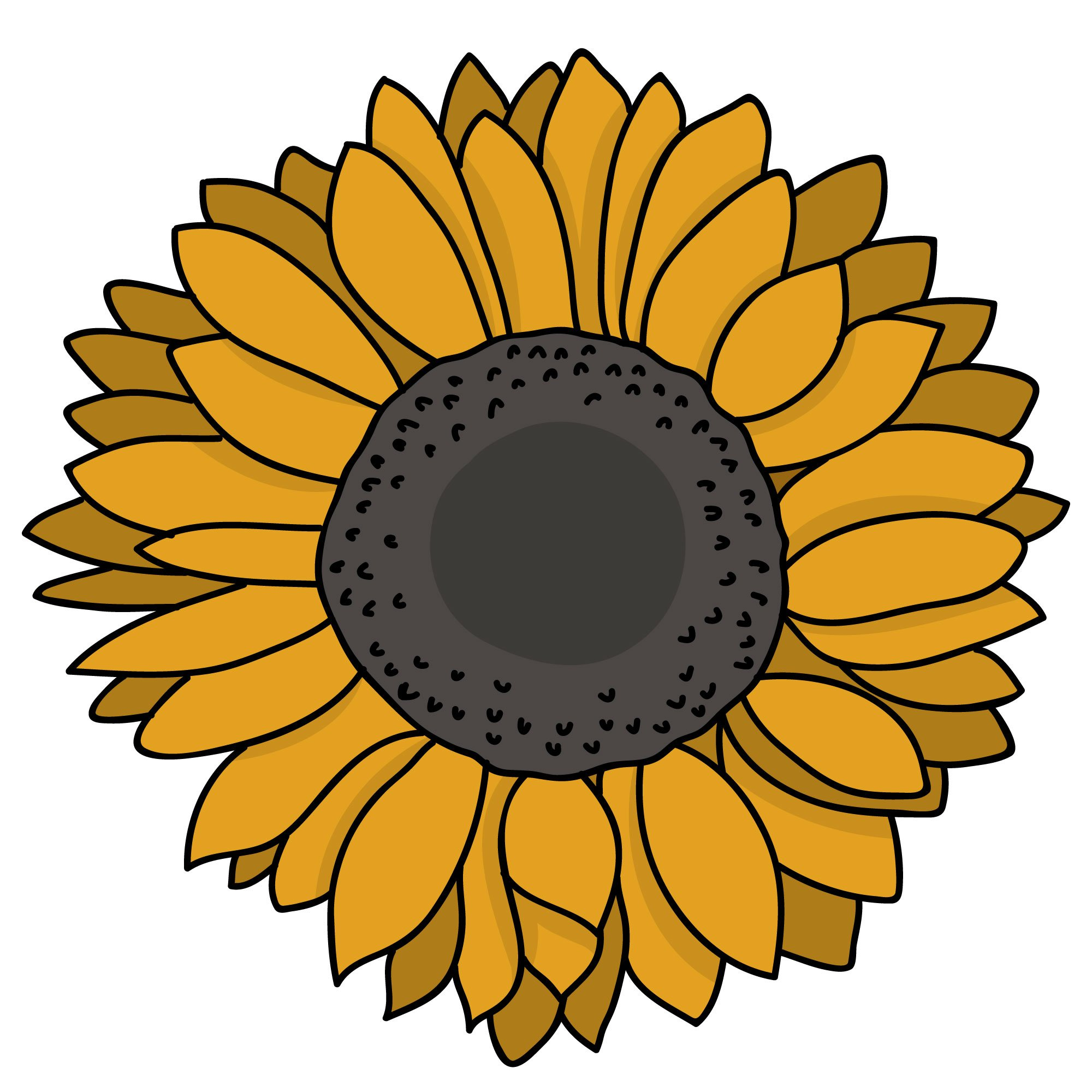 The Sunflower at Home